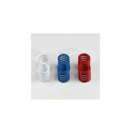 HOCK ABSORBER SPRING SET REAR V8 (2+2+2)